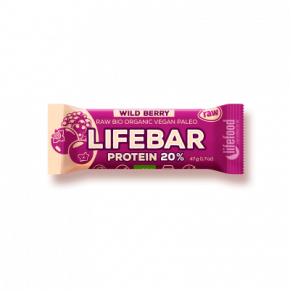 Raw Organic Lifebar Protein Wild Berry