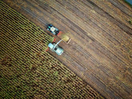 The external costs of agricultural production