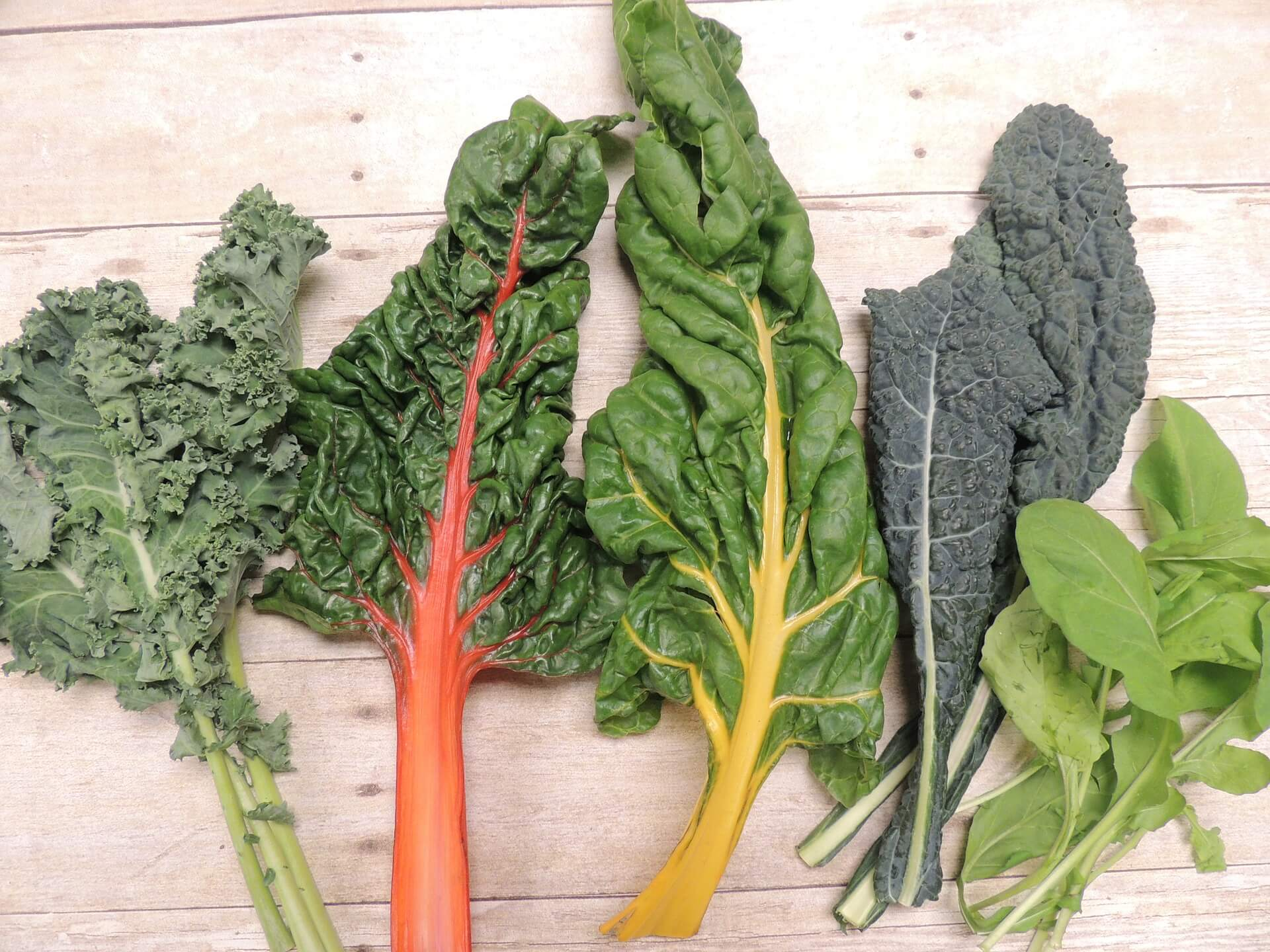 Grünes Blattgemüse als Proteinquelle